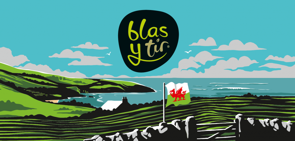 Blas y Tir Illustration Background 2019