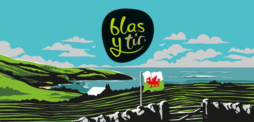 Blas y Tir Illustration Background 2019