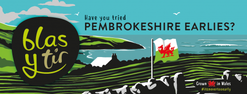 Pembrokeshire Earlies Shelf Talker 2019