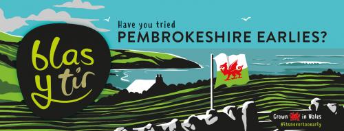 Pembrokeshire Earlies Shelf Talker 2019